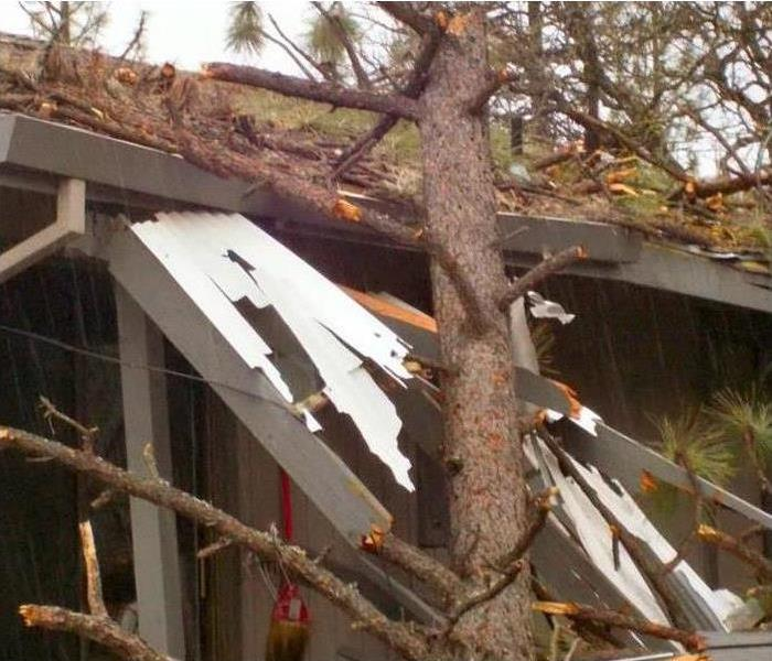 Storm damage of a house with a fallen tree laying against side and roof with lots of debris around