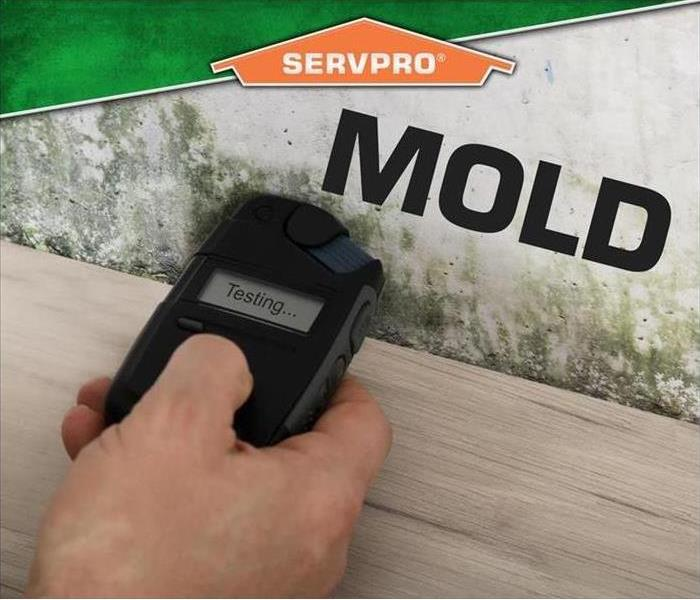 "mold testing instrument being held against water damaged wall. SERVPRO logo and word ""MOLD"" superimposed on image"